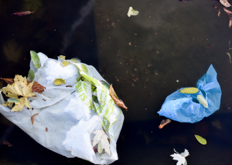 #BePlasticWise -Ocean Wiseが提唱するプラスチック製品撲滅推進活動-@カナダ