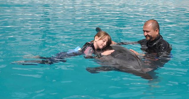 音を介して、イルカを相手に、障害者も、意志疎通や感情表現ができる!