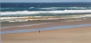 オーストラリア:支持される「冬眠戦略」<br>支援は潔くケチらず迅速に<br>世界コロナ日誌㉒