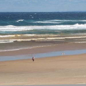 世界コロナ日誌㉒<br>オーストラリア:支持される「冬眠戦略」<br>支援は潔くケチらず迅速に